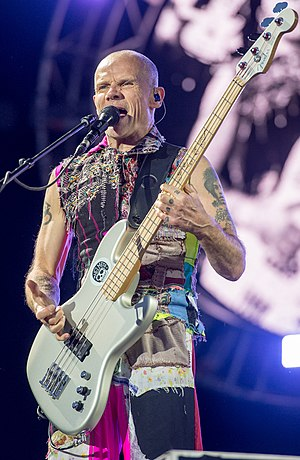 2016 Red Hot Chili Peppers - Michael Flea Balzary (cropped).jpg