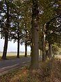 2016 Voerendaal, kasteel Rivieren 04.jpg