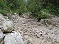 2017-07-22 (07) Cobbles at Lechnergraben at Dürrenstein (Ybbstaler Alpen).jpg