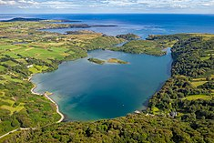 2019-07-31-Lough Hyne-0828.jpg