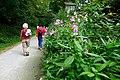2019-08-10 Hike Baldeneysee. Reader-17.jpg