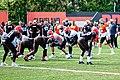 2019 Cleveland Browns Training Camp (48532241802).jpg