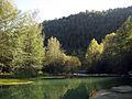 209 El Llobregat vora el pont de Pedret.jpg