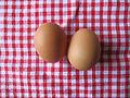 2 eggs.JPG