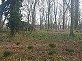 3634 Loenersloot, Netherlands - panoramio (36).jpg