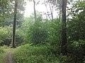 3981 Bunnik, Netherlands - panoramio - Alexandros Georgiou (14).jpg