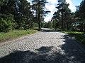 A7 - Rastplatz zwischen Kreuz 44 und Kreuz 43 - geo.hlipp.de - 14307.jpg