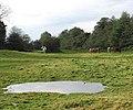 A big puddle - geograph.org.uk - 1031001.jpg