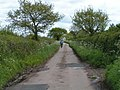 A lovely lane for cycling - geograph.org.uk - 1284203.jpg