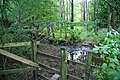 A woodland ford - geograph.org.uk - 2053215.jpg