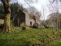Abandoned Farmhouse - geograph.org.uk - 403178.jpg