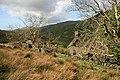 Abandoned house-farm known as Cwm-trwsgl - geograph.org.uk - 1286252.jpg