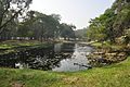 Acharya Jagadish Chandra Bose Indian Botanic Garden - Howrah 2011-01-08 9776.JPG