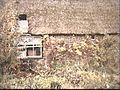 Achtergevel kleur - Waalwijk - 20458295 - RCE.jpg