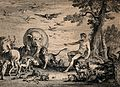 Adam naming the animals. Etching. Wellcome V0034186.jpg