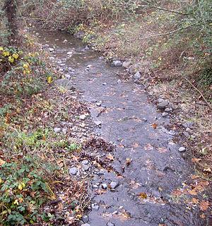 Adobe Creek (Sonoma County, California) - Adobe Creek at the Petaluma Adobe State Historic Park.