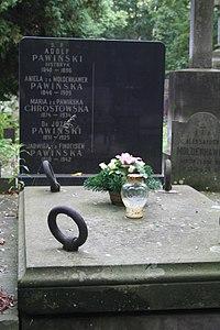 Adolf Pawiński grób.JPG
