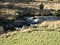 Afon Tywi north of Nant y Stalwyn, Powys - geograph.org.uk - 1044093.jpg