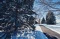 Alexander Park, Faribault, Minnesota - Rice County Fairgrounds (39836347731).jpg