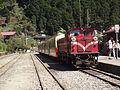 Alishan railway 2014 03.JPG