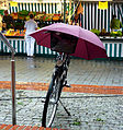 All-weather bicycle.jpg