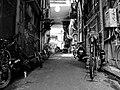 Alley (202249641).jpeg