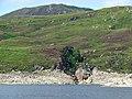 Allt Cam Ban waterfall. - geograph.org.uk - 243901.jpg