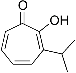 Thujaplicin group of chemical compounds