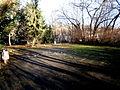 Am Weingarten PrenzBerg (12) Park.JPG