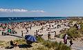 Amager Strandpark 2014.jpg