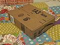 Amazon Box (Picture 2).JPG