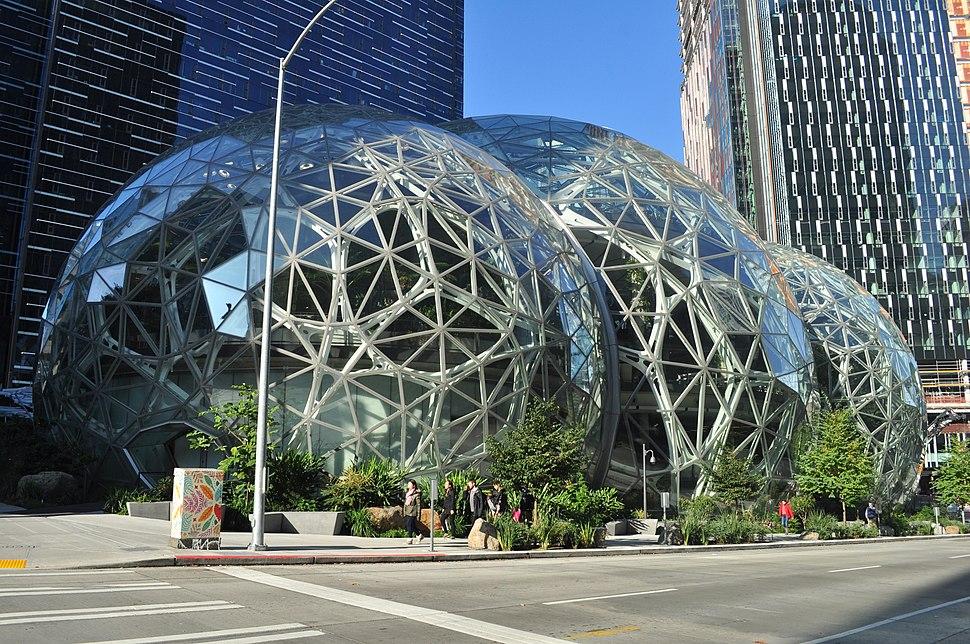 Amazon Spheres 05