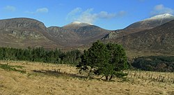 Annalong Wood and the Mourne Mountains - geograph.org.uk - 1138157.jpg