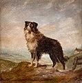 Anon-Sheep-97920 - A Sheep Dog - circa 1900.jpg