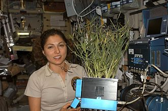 Anousheh Ansari - Ansari holds a plant grown in the Zvezda Service Module of the International Space Station.