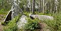 Anta da Pedra Cuberta, Treos, Vimianzo.jpg