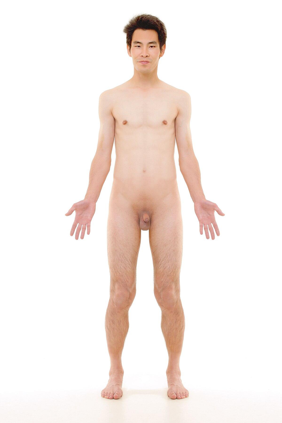 Huge tits nipples video gallery gang bang