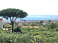 Antico Bagno Favorita (Ercolano) in 2020.06.jpg
