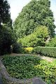 Aquatic plants, pond and hedging Gibberd Garden Essex England.JPG