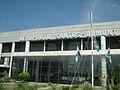 AsdAeroporto Santos Dumont.jpg