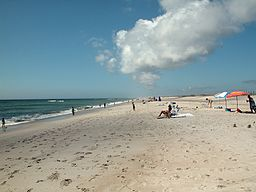 Assateague fg03.jpg