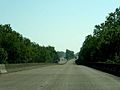 Atchafalaya Swamp Freeway.jpg