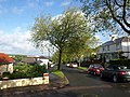 Audley Avenue, Torquay - geograph.org.uk - 1313212.jpg