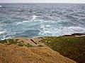 Australia - Nice stony beach in Sydney - panoramio.jpg