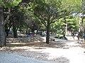 Autocamp Boban - panoramio.jpg
