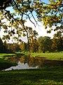 Autumn and twig above river Pavlovsk.jpg