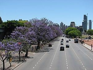 Avenida Figueroa Alcorta - The avenue on its route towards the Barrio Parque area.