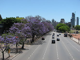 Avenida Figueroa Alcorta - The avenue on its route towards the Barrio Parque area.