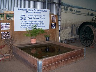 Avondale Agricultural Research Station - Aquaculture as an income supplement, this display is inside the machinery shed
