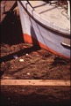 BOW OF FISHING BOAT IN POLLUTED HARBOR - NARA - 545270.tif